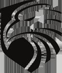 Falcon-Property-Group-logo